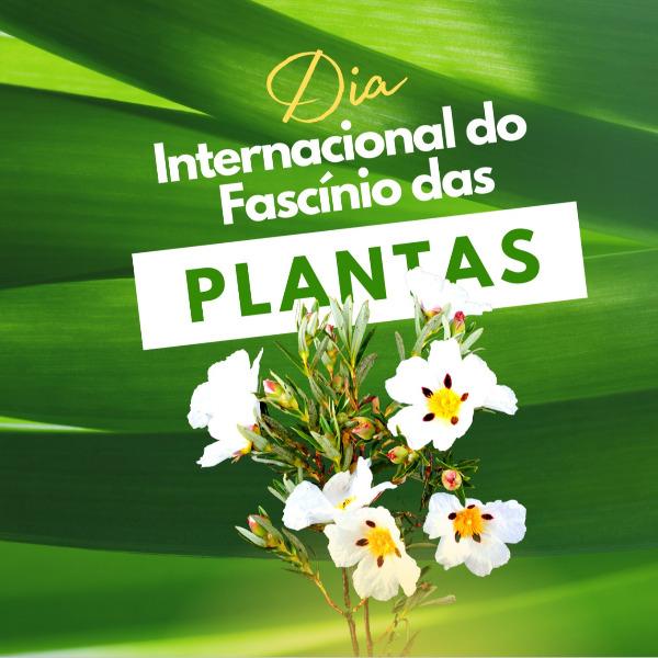 Ciclo de Webinars: Dia Internacional do Fascínio das Plantas